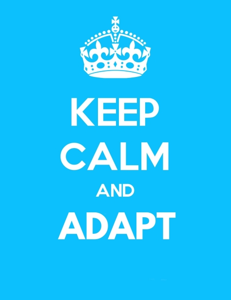 KEEP-CALM-AND-ADAPT
